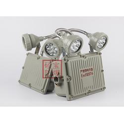 BAJ52防爆应急装置灯 2×3W双头防爆应急灯图片
