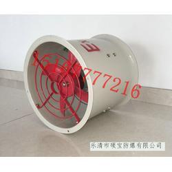 圆形BT35-11 0.25KW防爆防腐轴流风机图片