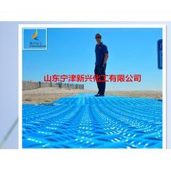 耐油-耐低溫-耐腐蝕-重量輕-易搬運高分子聚乙烯鋪路墊板圖片