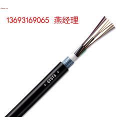 GYXTW-8B1双铠双护光缆图片