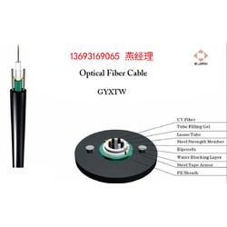 GYFTA-8A1普通光缆厂家图片