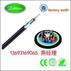 耐电痕光缆ADSS-16B1-500M跨距多少钱图片