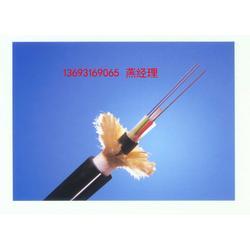 架空光纜ADSS-4B1-600M跨距現貨圖片