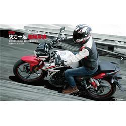 摩托车-大地恒通-豪爵摩托车新款钻豹图片