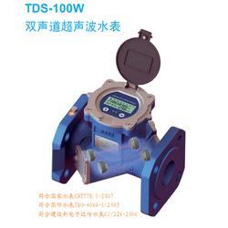 海峰TDS-100超声波双声道电子远传水表图片