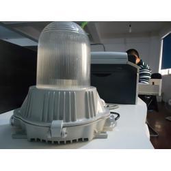 锅炉房100W防眩泛光灯 DFE6108三防弯灯图片