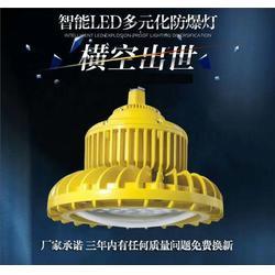 水泥厂LED防爆照明改造 120WLED防爆灯图片