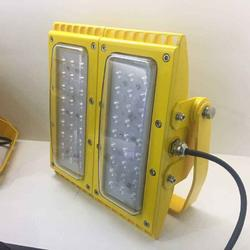 200WLED防爆灯 弯杆式LED防爆模组灯图片