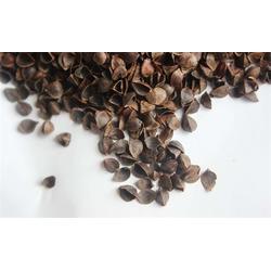 唐山荞麦壳-荞然 荞麦壳-荞麦壳加工厂家图片