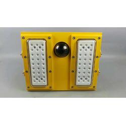 BFC8118 酒精工厂防爆摄像LED灯图片