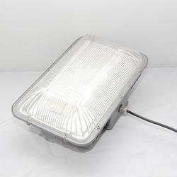 LED冷库灯防水防潮灯长方形 三防灯冷库低温专用灯 防爆三防灯图片