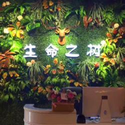 仿真植物墙 花墙 鲜花 仿真树仿真绿植墙 植物景观图片