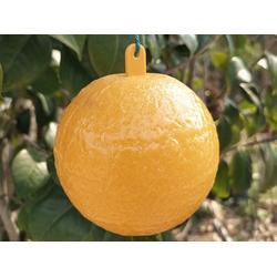 粘虫球-西安价位合理的诱蝇球图片