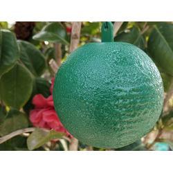 粘虫球-实用的诱蝇球西安供应图片