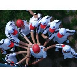 拓展训练培训费用 慧人方舟管理咨询提供靠谱的拓展训练培训