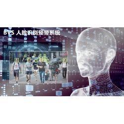 BVS人脸识别预警系统图片