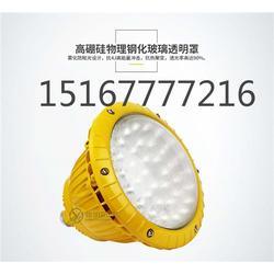 LED防爆灯80W  80WLED防爆投光灯图片