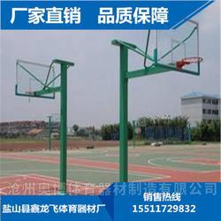 大理户外可移动球架来电咨询图片
