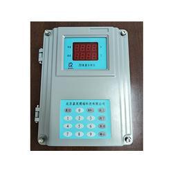 内江氧量分析仪-北京市超值的壁挂表供销图片