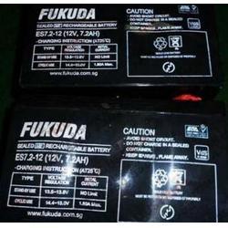 FUKUDA蓄电池ES65-12  12v65/AH代理商报价图片