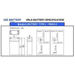 原装GS杰士蓄电池PE6V3.2图片