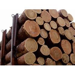 定西钢材木材-甘肃鑫港物流提供兰州地区实惠的钢材木材图片
