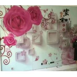 3d安阳墙体彩绘机多少钱-中科安普合理批发