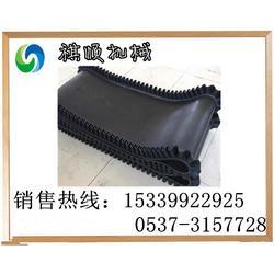 GLD800环形钢丝芯胶带 裙边环形皮带 无接口给煤机输送带图片