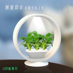 植物灯工业产品外观设计 产品设计中的材料选择图片