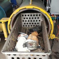 10T病死鸡无害化处理设备图片