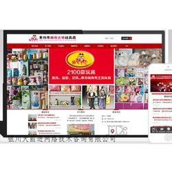 惠农网络推广公司-专业的银川网络推广公司在银川图片
