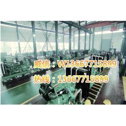 200kw玉柴发电机组哪家好 200kw玉柴发电机组报价便宜图片