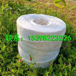 打捆绳秸秆捆草绳PP打包绳 塑料绳图片