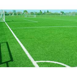 齊齊哈爾門球場人造草坪-供應遼寧熱銷的人造草坪圖片