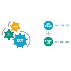全网霸屏营销系统多少钱-郑州全网霸屏营销系统(河南凝睿)图片