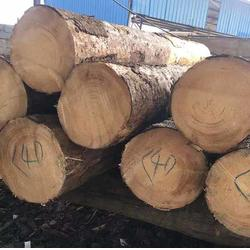 铁杉建筑木方价-晟荣木材建筑口料-石家庄铁杉建筑木方图片