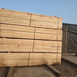 木材加工厂-国通木材-木材加工厂行情图片