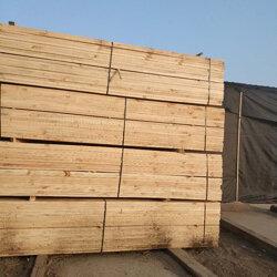 5*8铁杉建筑木方报价-国通木材(在线咨询)铁杉建筑木方图片
