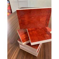 六安金利木业优质板材 绿地模板-六安绿地模板图片