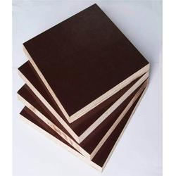 工程清水模板多少钱-金利木业公司
