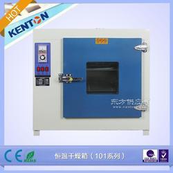康恒101-0 烘箱 干燥箱 恒温干燥箱图片