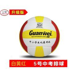 陕西排球供应-临沂哪里有供应优良的排球图片