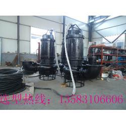 化工厂沉淀池泥砂、渣浆处理输送设备-CNL液下渣浆泵图片