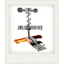 2X1000W升降照明灯具销售图片