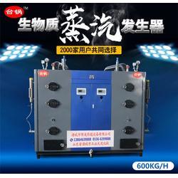 四川生物质蒸汽发生器-台锅锅炉-生物质蒸汽发生器规格图片