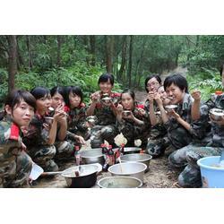 張家口夏令營-青少年夏令營-雷霆萬鈞夏令營(優質商家)圖片
