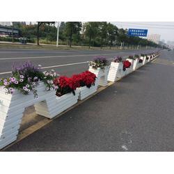福建PVC发泡道路花箱厂家-供应江西实用的PVC花箱图片