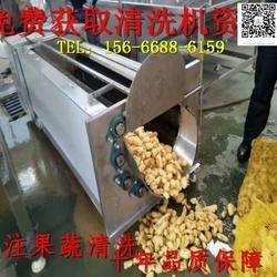 蔬菜毛辊清洗机厂家 蔬菜毛辊清洗机 清洗机图片