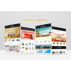 漳州移动营销-诚挚推荐有实力的网站建设图片