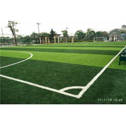 学校人造草足球场施工建设人工草皮建设厂家图片